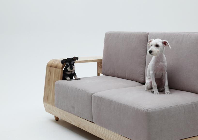 dog sofa 2