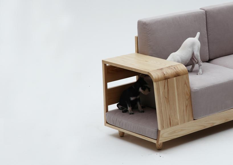 dog sofa 3