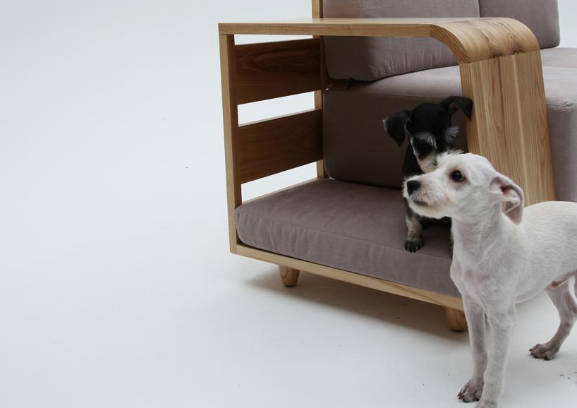 dog sofa 4
