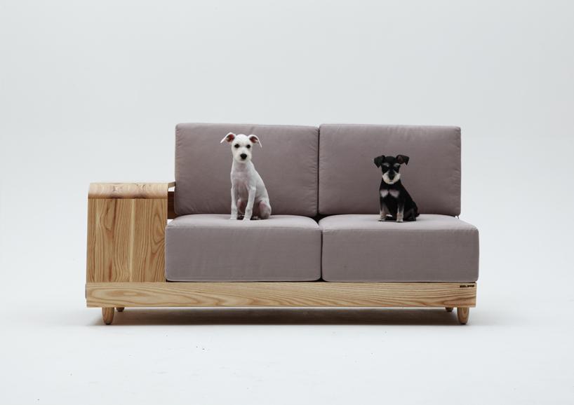 dog sofa 6