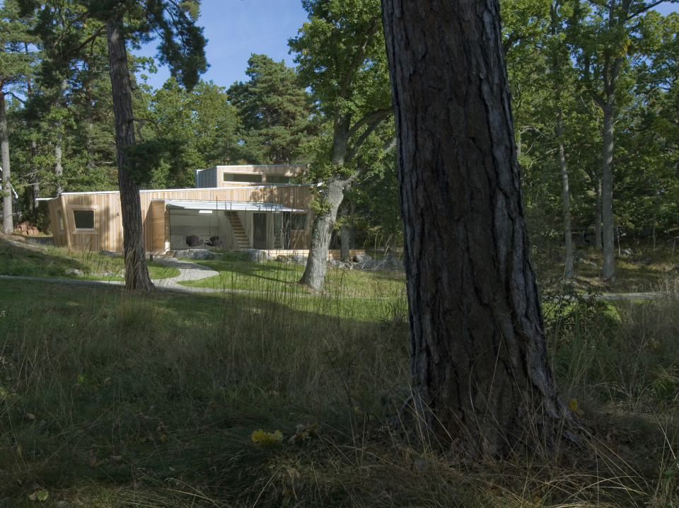 forest house 5
