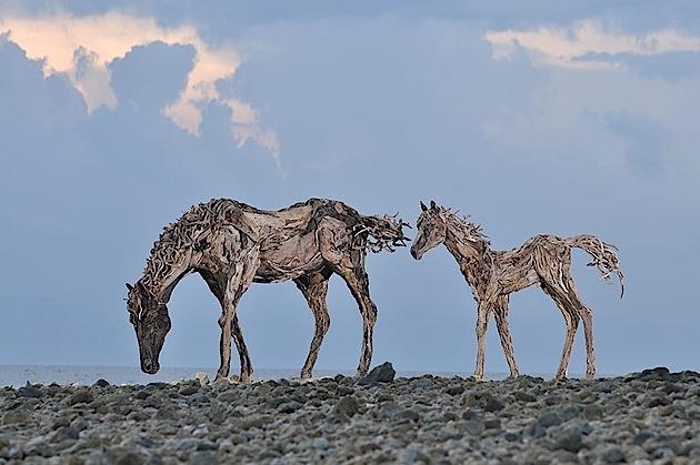 driftwood horses 5