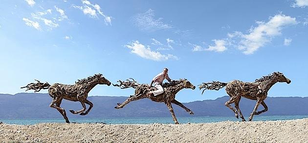 driftwood horses 7