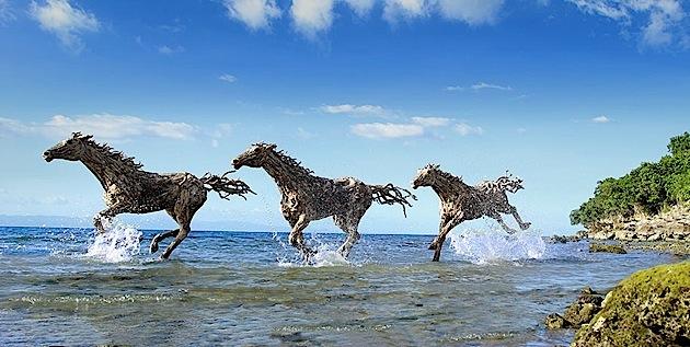 driftwood horses 8