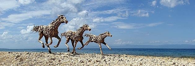 driftwood horses 9