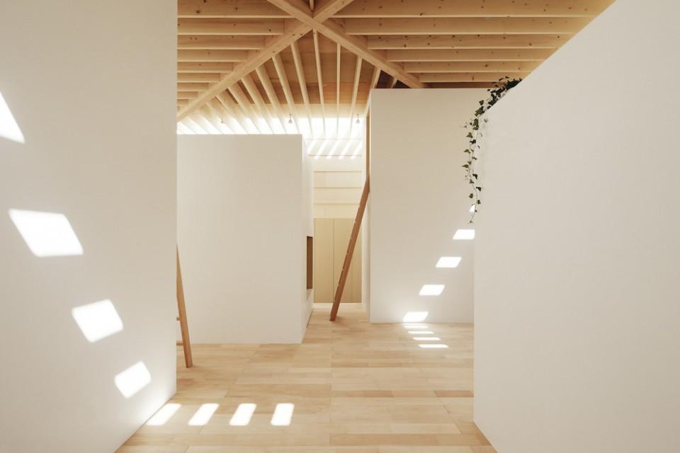Light-Walls-House-1