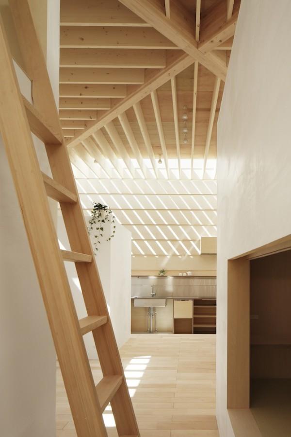 Light-Walls-House-5
