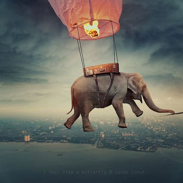 Caras-Ionut-dream-like-photos13