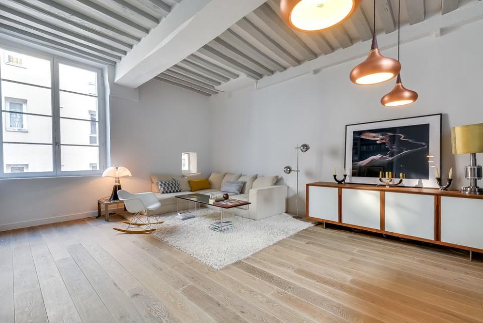 apartment in paris 2