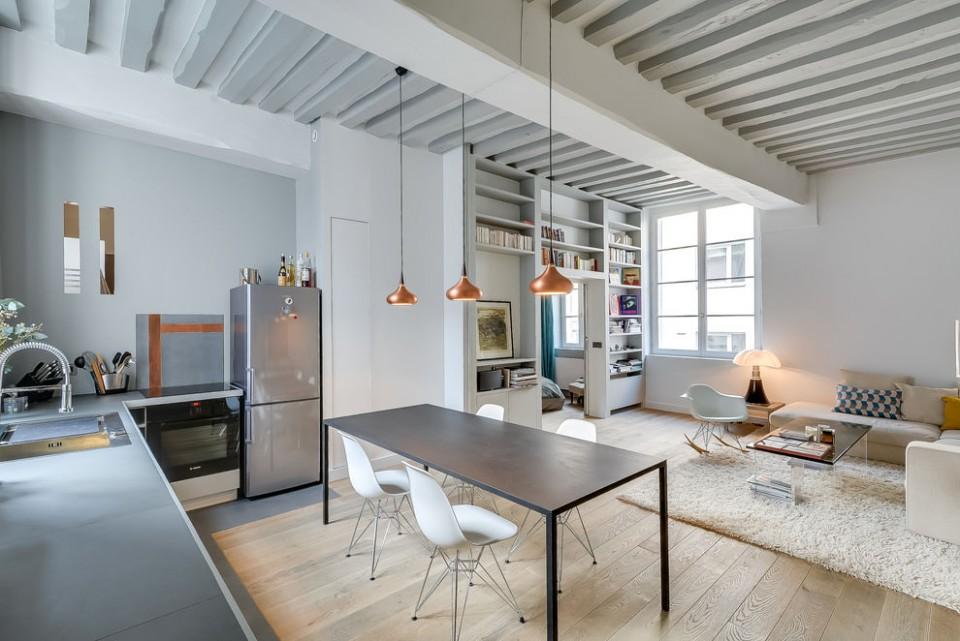 apartment in paris 6
