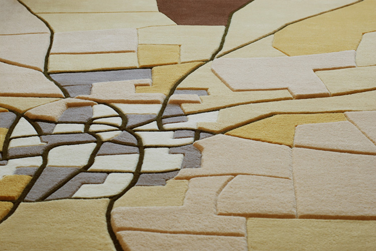 landcarpet_africa2
