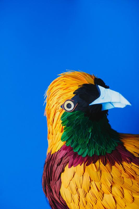 paper bird 13