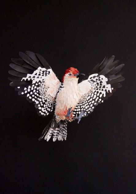 paper bird 8