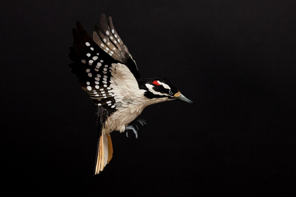 paper bird 9