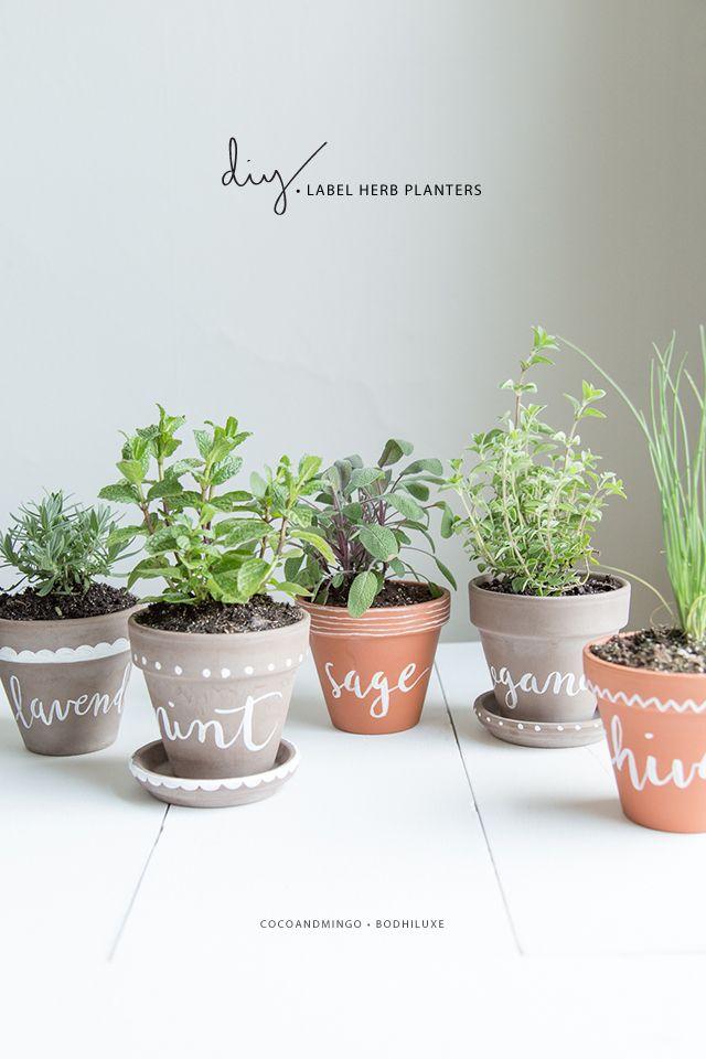 herb planter 3
