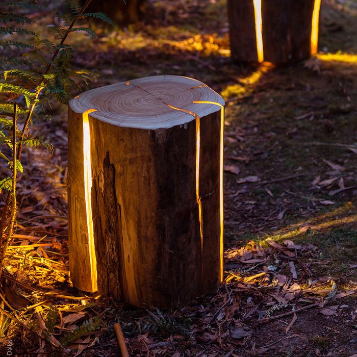 Log lamp 1
