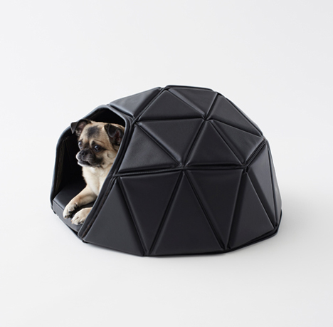 Transformable Accessories For Dogs